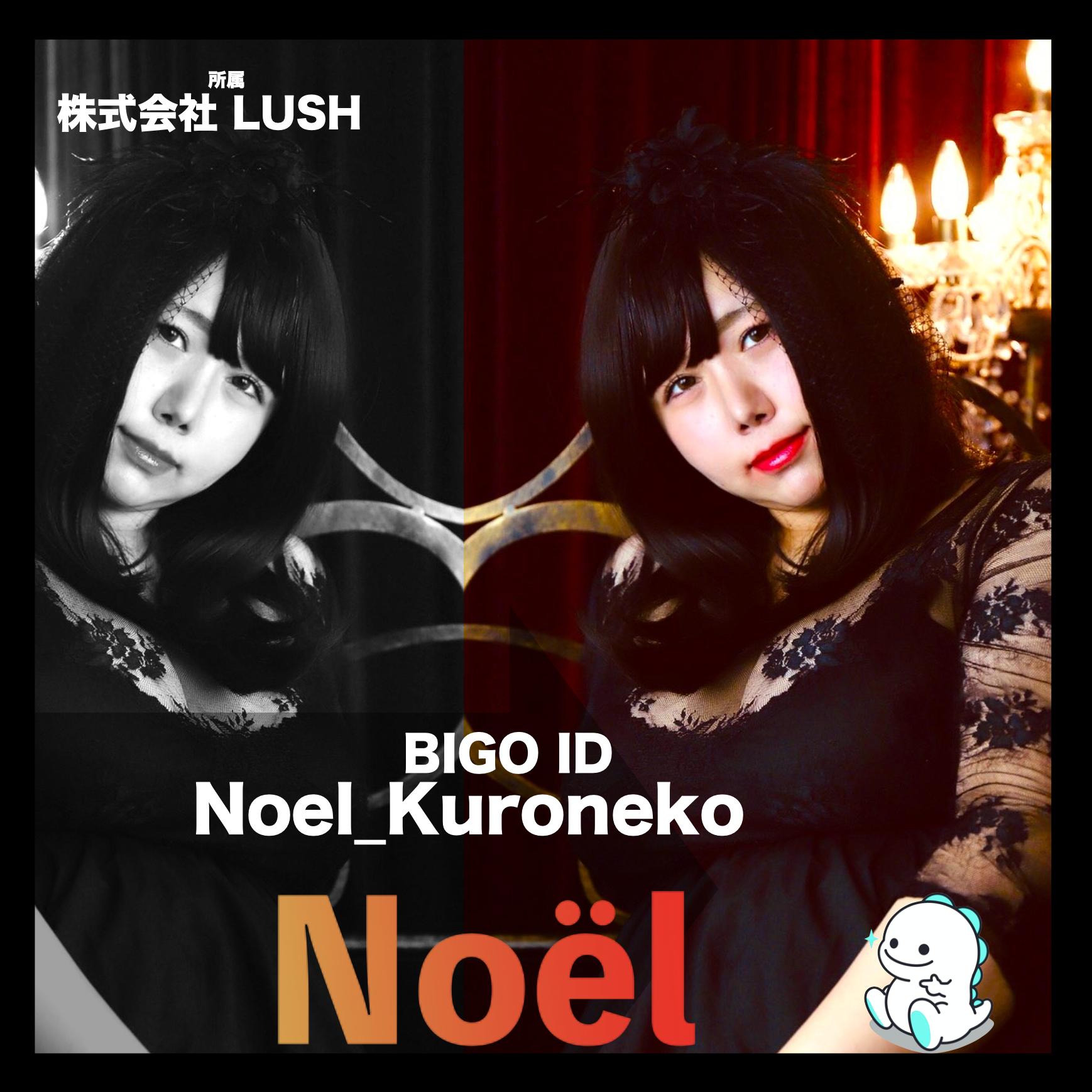 Noel(ノエル)